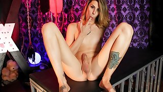 Alluring Casey Increased by Her Assets - TGirlsXXX